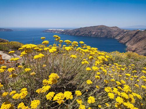 """Santorinreisen """"Perle der Ägäis"""" führen auf Wanderwegen zu den schönsten Stellen der Insel Santorin (c) Tobias Schorr"""